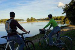 Balade à vélo du coté de Candes-Saint-Martin