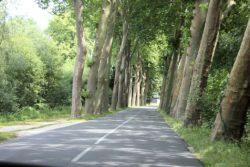 Rue-de-Saché-vers-Sorigny